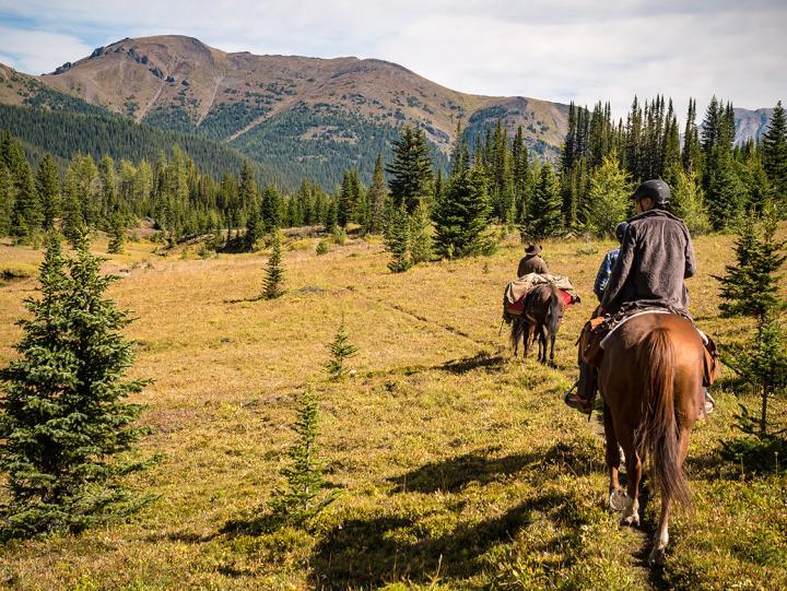 Banff Nationalpark zu Pferde