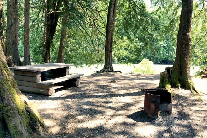Chehalis River Campground
