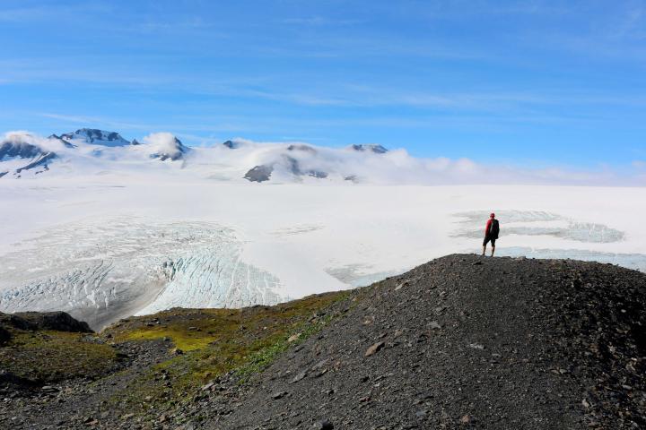 Yukon, Alaska, Wildnis
