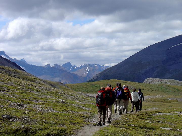 Active Rockies