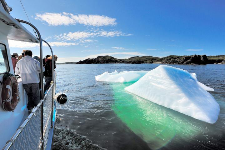 Eisberge und Wale Neufundlands