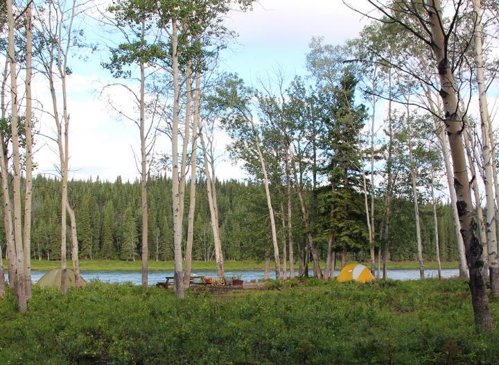 Im Kanu auf dem Yukon River